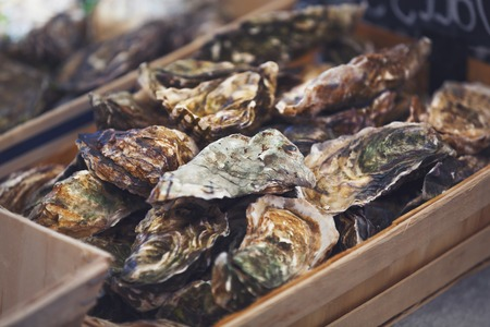 Traditional  fish market stall full of fresh shell oysters Stock Photo - 50956338