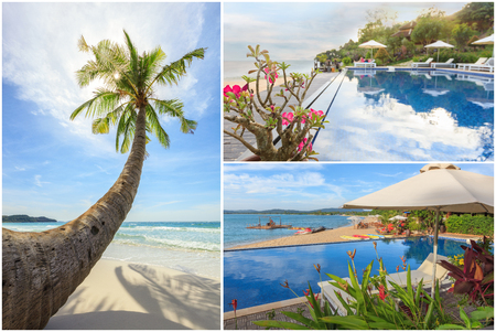 downshift: Beautiful swimming pool in tropical garden full of flowers and palmtree right on sandy beach. Fullsize collage Stock Photo