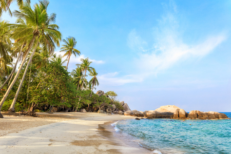 Empty morning Samui beach with tall palmtrees and rocks