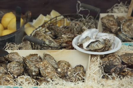 saltwater pearl: Traditional fish market stall full of fresh shell oysters with lemons