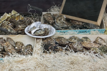 saltwater pearl: Traditional fish market stall full of fresh shell oysters in boxes