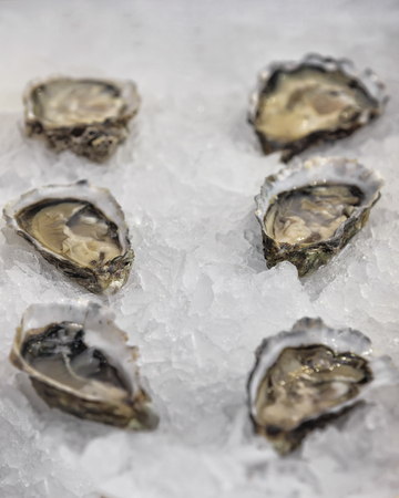 saltwater pearl: Traditional fish market with dozen of fresh shell oysters on ice Stock Photo