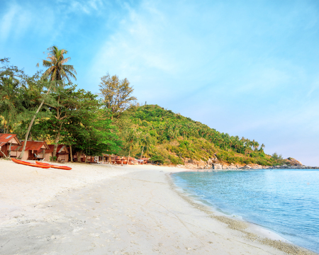 downshift: Phangan beach with white sand and tall palms