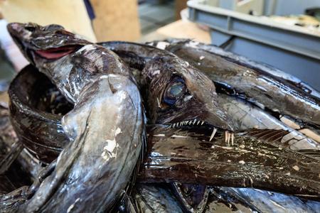 scabbard: black scabbardfish or Espada from Atlantic Ocean sold in Madeira Stock Photo