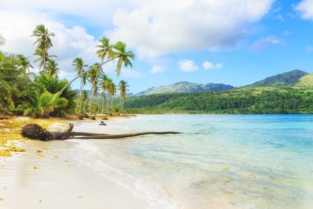 ドミニカ共和国のバケーション 写真素材