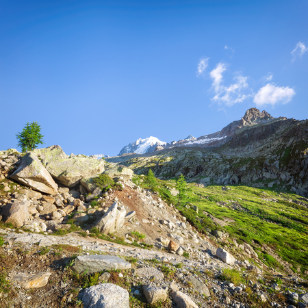 Traveling to beautiful French Alps in summer Stok Fotoğraf