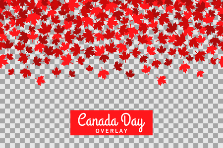 first day: Seamless pattern with maple leafs for 1st of July celebration on transparent background. Canada Day.