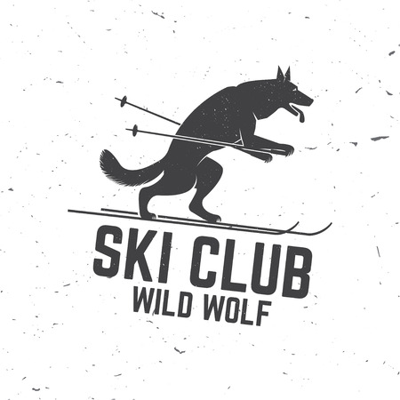 Ski club concept with wolf. Illustration