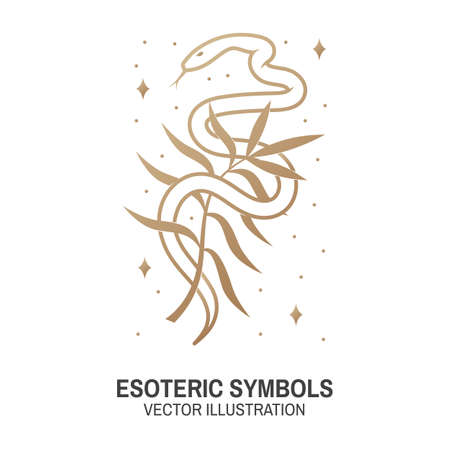 Esoteric symbols. Vector. Thin line geometric badge. Outline icon for alchemy or sacred geometry. Mystic and magic design with snake and wildflower Ilustracja