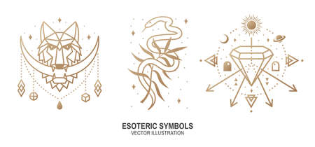 Esoteric symbols. Vector. Thin line geometric badge. Outline icon for alchemy or sacred geometry. Mystic and magic design with wolf, snake, wildflower, stars, planets, crystal and moon. Ilustracja