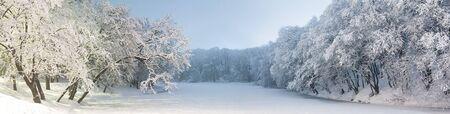 winter park: Beautiful panorama of winter park in Kiev