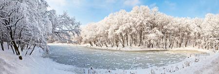kyiv: Beautiful panorama of winter park in Kiev