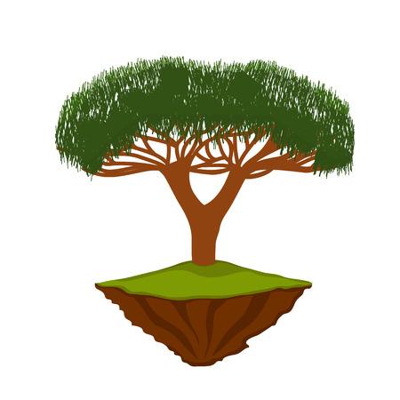 vector illustration bonsai tree on the island