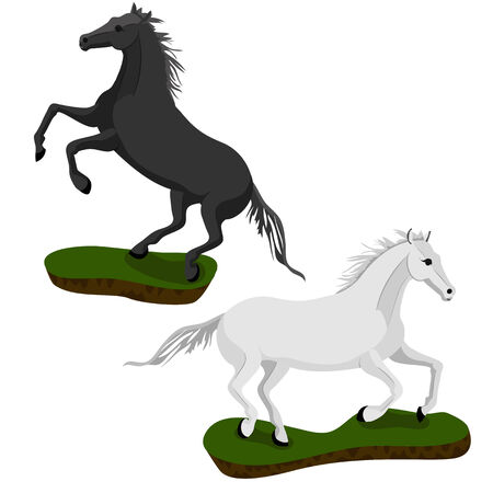 White and black horse in motion on small islands