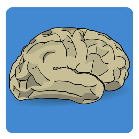 Brain icon isolated on a blue background 向量圖像