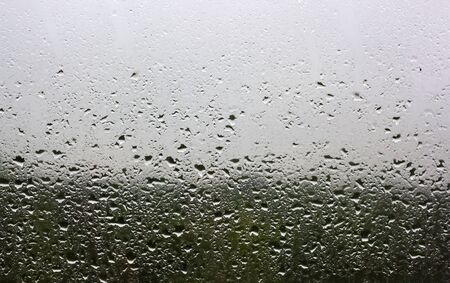 Raindrops on the window pane outside the window you can see the green forest and gray sky