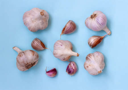 Five large heads of garlic and five cloves of garlic lie on a blue background, Flatley