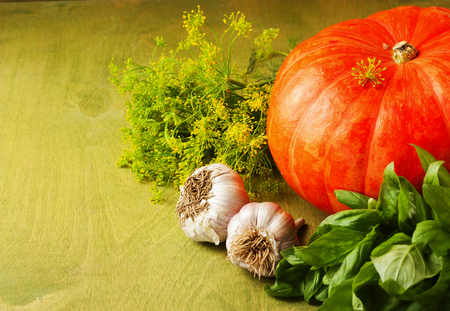 big pumpkin, garlic, dill and herbs on a green background photo