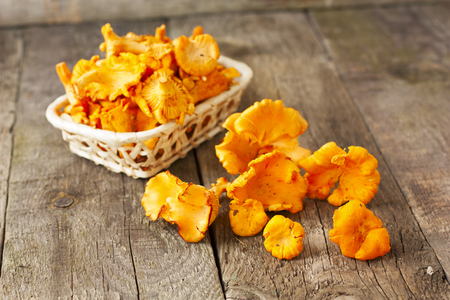 girolle: chanterelles in basket on wooden background