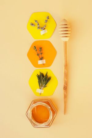 Collage : paper honeycomb glued to the patch of herbs and a jar of honey