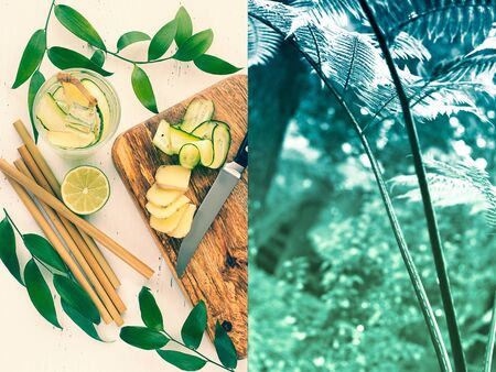 collage:prepare ginger water from the ginger, lime, cucumber and water, tropical forest