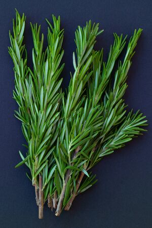 Fresh rosemary leaves are a traditional condiment of Italian, Greek and French cuisine. Medicinal plant, an adaptogen for the prevention of viruses.