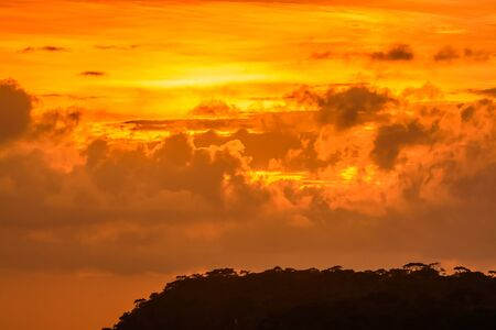 Beautiful sunset with golden sky and golden clouds at the Mak dook Cliff, Phu Kradueng National park, famous tourist destination in Thailand