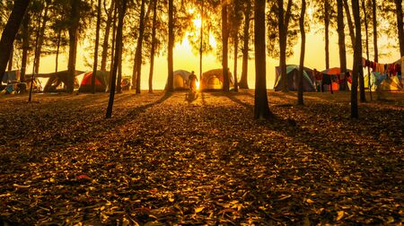 The image of camping tents and activity on the beach in the morning with golden sky and sunrise. Hat Wannakon, a beach filled with pine trees in Thailand.