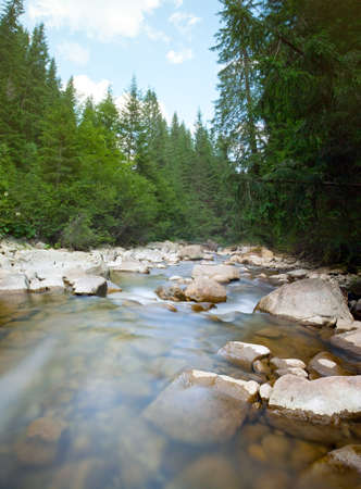River in the Carpathian Mountains in Ukraine