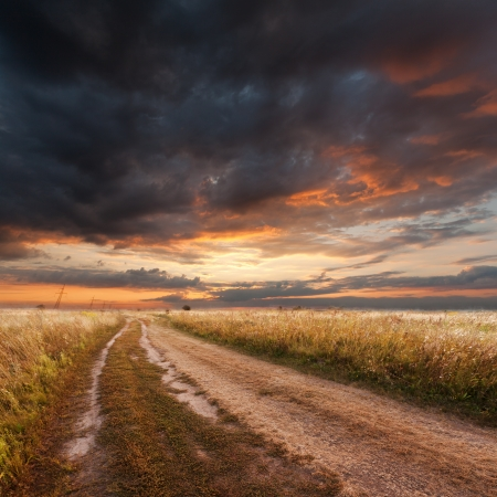 Beautiful summer landscape, sunset in the field Stock Photo - 15206559