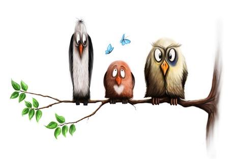 three birds, sit on a branch. Three friends. photo