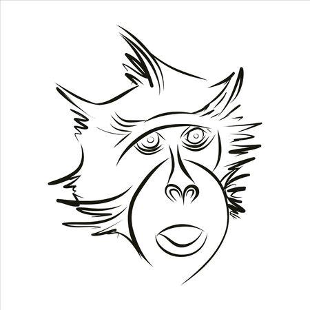 silueta mono: Silueta del mono en l�neas negras sobre un fondo blanco. Dibujo a mano. Vector.