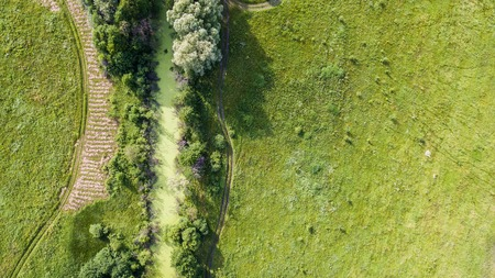 sodden: Spring lush green landscape of the field with green tree in the center and roads sodden with rain. Aerial view. Top view. Stock Photo