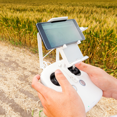 remote controls: Demonstration of unmanned copter. Man controls quadrocopter flight. Flying the copter over a field of wheat. Remote control in a mans hands.