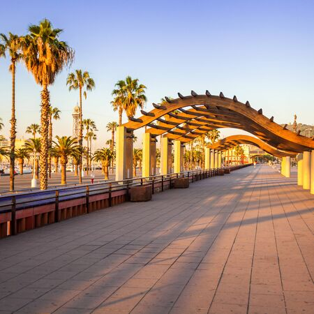 Quay with palm trees near the marina at sunrise in Barcelona. Travel to Spain