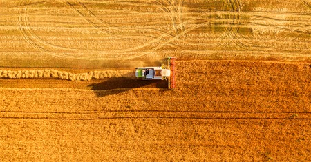 Harvester machine working in field . Combine harvester agriculture machine harvesting golden ripe wheat field. Agriculture. Aerial view. From above. Reklamní fotografie