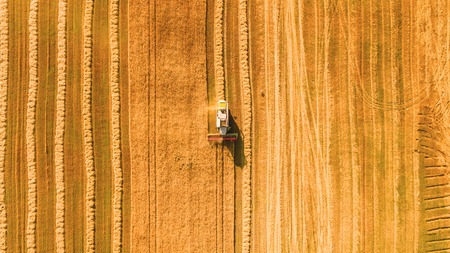 Harvester Maschine auf dem Gebiet arbeiten. Mähdrescher Landwirtschaft Maschine Ernte golden reifen Weizenfeld. Landwirtschaft. Luftaufnahme. Von oben.