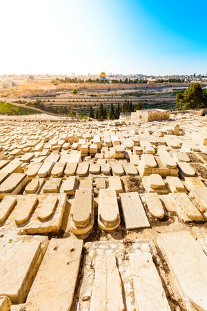 jewish town: Mount of Olives and the old Jewish cemetery in Jerusalem, Israel. Panoramic view of the old town, Muslim Quarter and Temple Mount. Dome of the Rock.