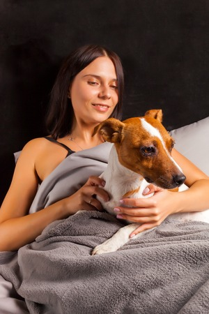 climbed: Young beautiful brunette woman plays in bed with her dog. Jack Russell Terrier climbed into bed with her owner in the morning.