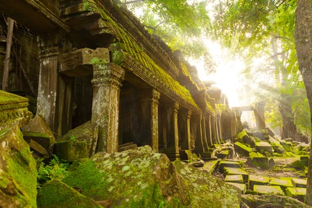 Ancient Ta Prohm Temple in the morning sun rays, Angkor, Cambodia. Ruin 版權商用圖片