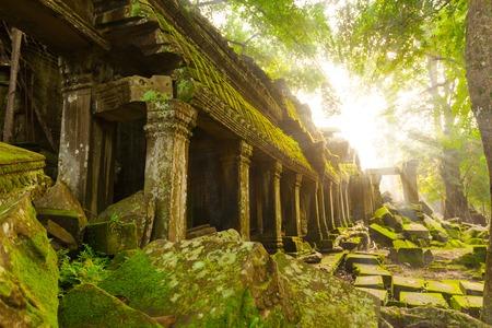 Antiguo templo de Ta Prohm de los rayos del sol de la mañana, Angkor, Camboya. Ruina Foto de archivo - 68253948