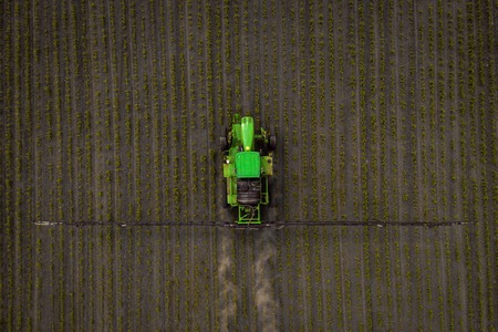 The tractor spraying the field with chemicals in the spring 版權商用圖片