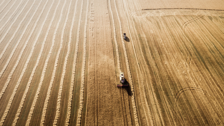 Harvester working in field and mows wheat. Ukraine. Aerial view.