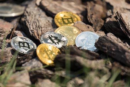 Moedas de bitcoin de ouro e prata encontram-se em correntes de pinho de madeira Foto de archivo - 88843175