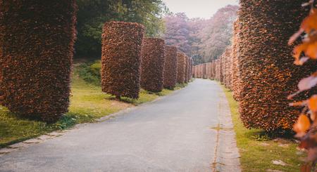 Autumn Topiary Park in Brussels, Belgium Imagens - 124846166