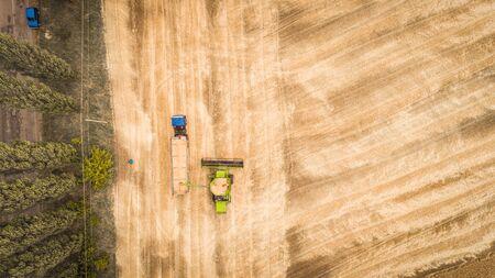 Une belle nouvelle moissonneuse-batteuse déverse du grain dans une remorque de camion sur le terrain. Vue aérienne