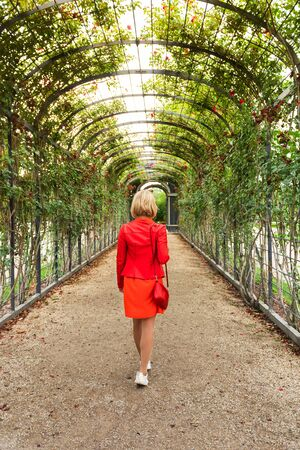 A woman in a bright orange dress walks along an alley of roses in a park