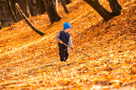 The child is played in the autumn foliage
