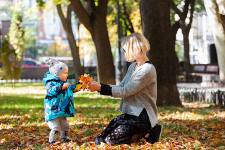 Little boy with mother in park in autumn Banco de Imagens
