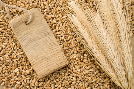 fascicle: wheat grain and tag price